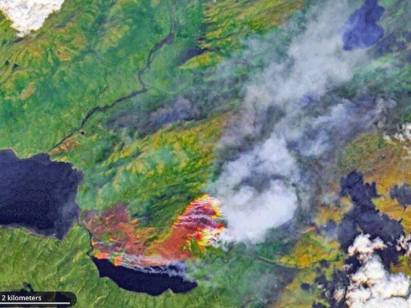 وسعت آتش سوزی های جنگلی قطب شمال بزرگ تر از اتحادیه اروپا
