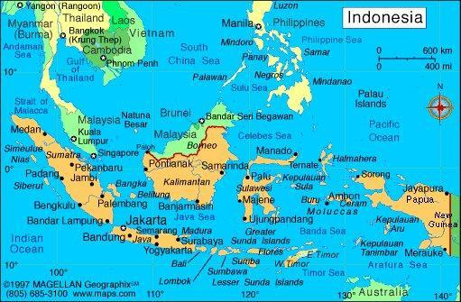 پلیس اندونزی: تظاهرات پاپوآ از قبل طرح ریزی شده بود