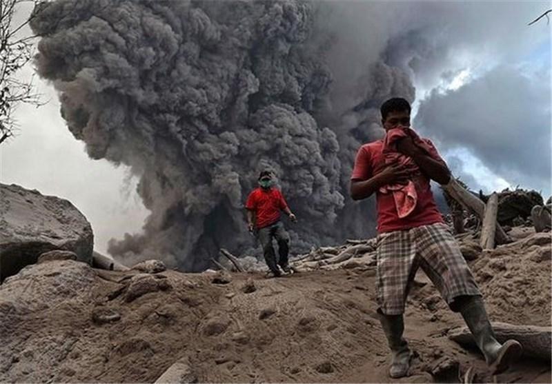 بهمن خاکستر در اندونزی