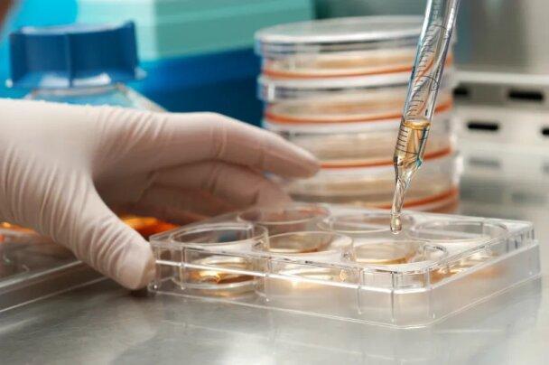 روزانه 300 عضو جدید به شبکه آزمایشگاهی اضافه می شود