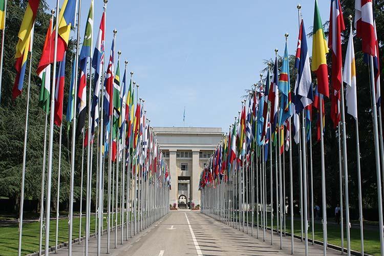کارکنان سازمان ملل دورکاری می کنند