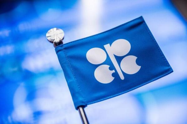 فراوری نفت اوپک افزایش یافت